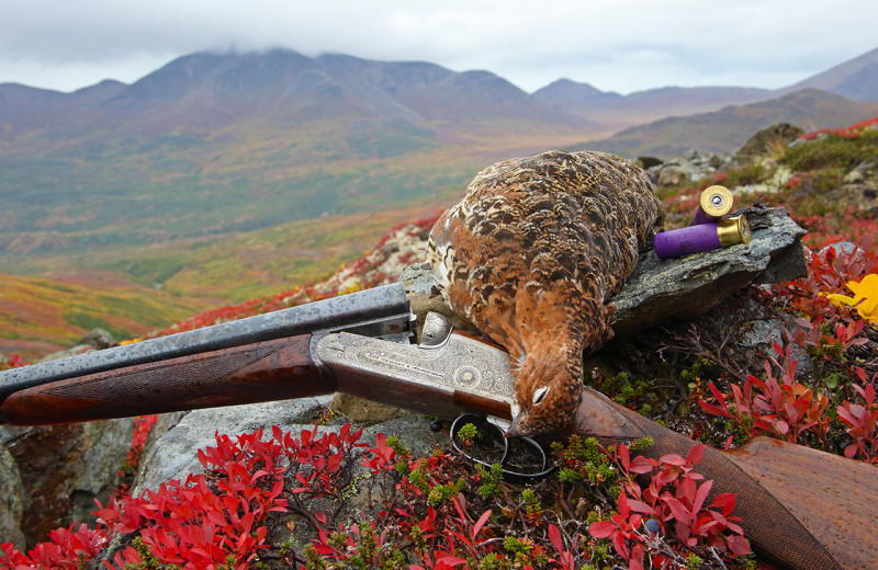 Hunting at All Alaska Outdoors Lodge.