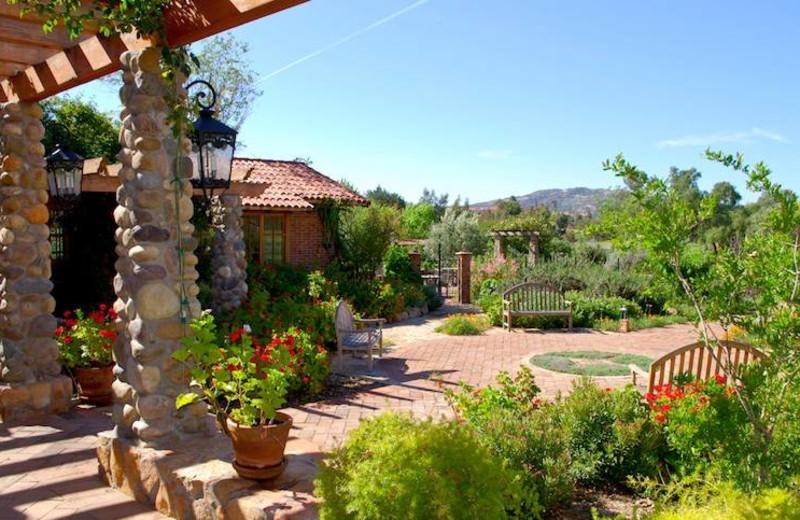 Patio at Rancho La Puerta.