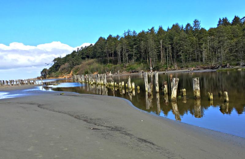Beach at Hi-Tide Ocean Beach Resort.