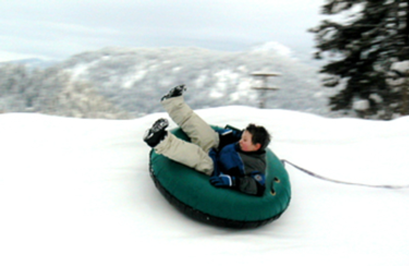 Winter Activities at Icicle Village Resort