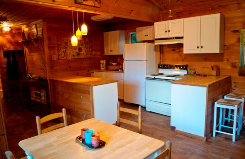 Cabin kitchen at Cabins in Hocking.