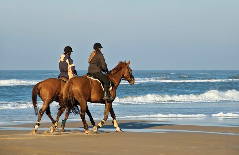 Horseback riding on the beach near Sonoma Coast Villa & Spa Resort.