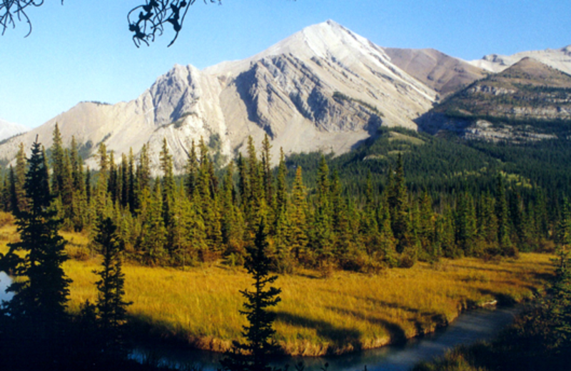 Mountain view at Pine Bungalows.