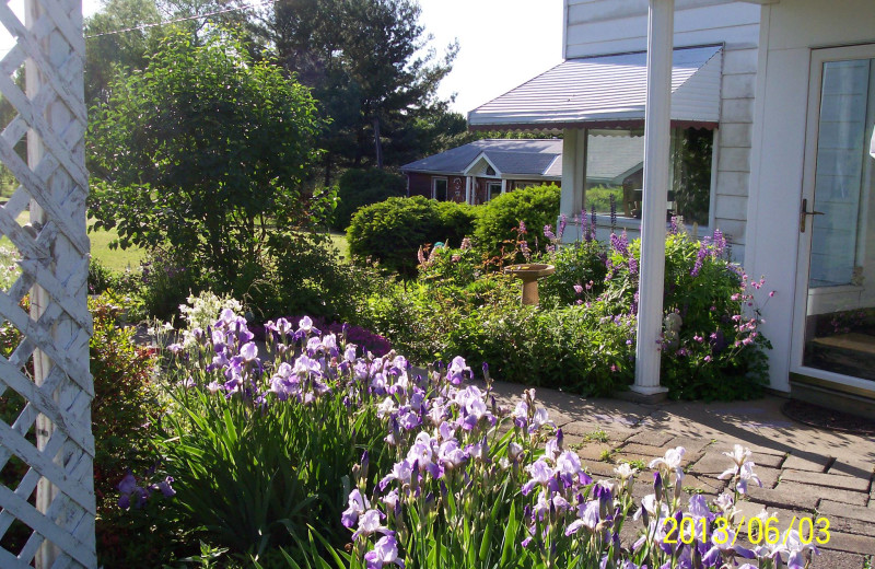 Exterior view of Lilac Springs.
