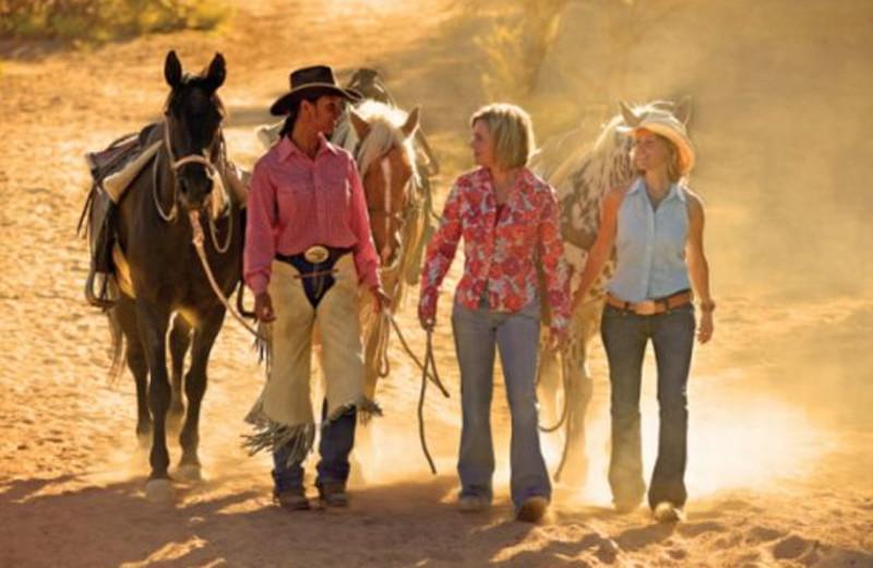 Horse activities at Rancho De Los Caballeros.
