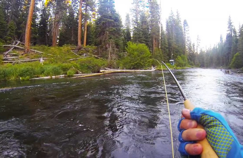 Fishing in the Deschutes River