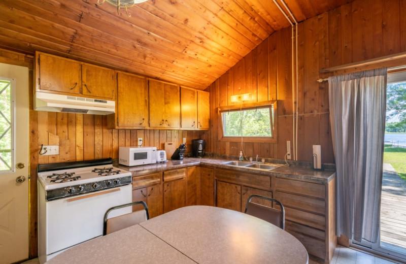 Cabin kitchen at Rising Eagle Resort.