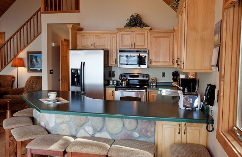 Rental kitchen at The Conger Collection.