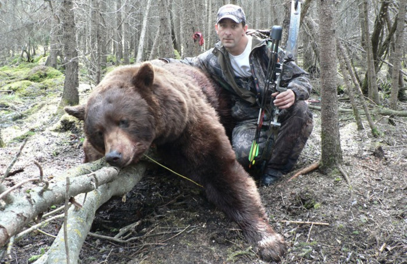 Bear hunting at Harris Hill Resort.