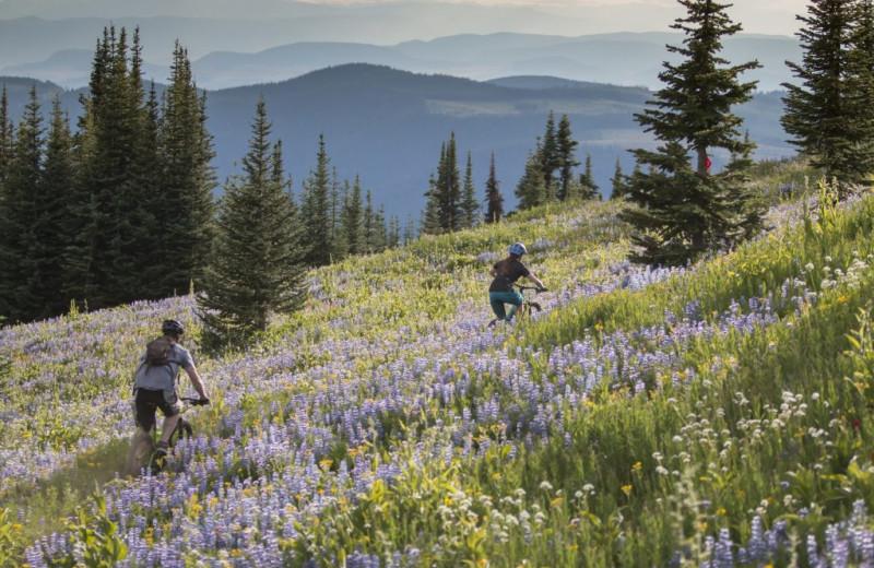 Biking at Bear Country Property Management (2018) Ltd.
