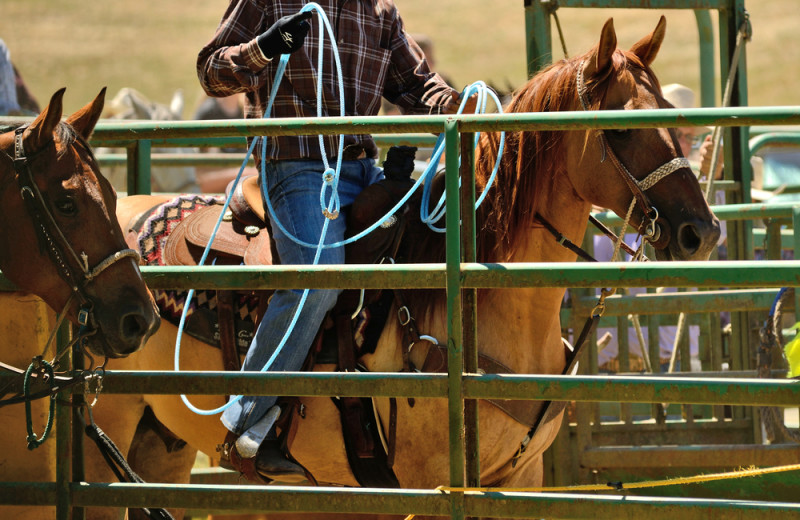 Rodeo at Burnet County Tourism.