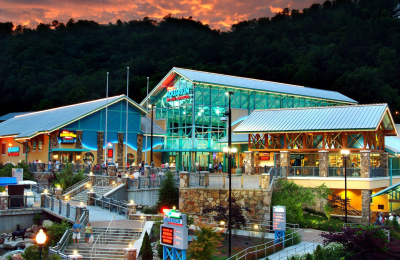 Aquarium near RiverStone Resort & Spa.