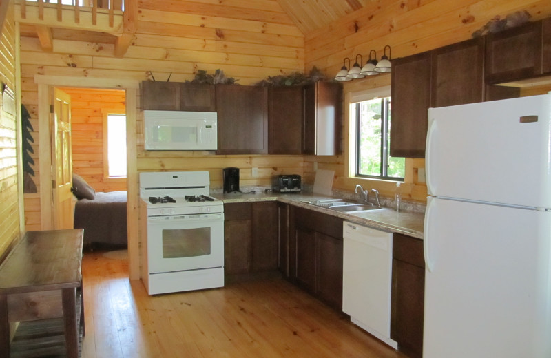 Cabin kitchen at Niemeyer's Rugged River Resort.