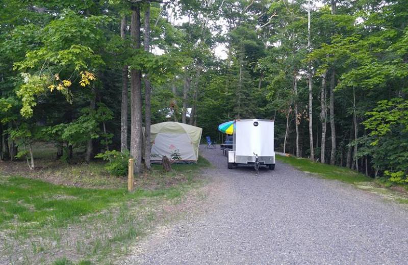 Campground at Wilderness Resort Cabins & Campground.