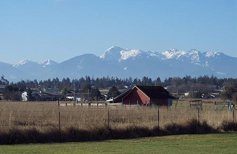 Beautiful Olympic Mountains view at Juan de Fuca Cottages.
