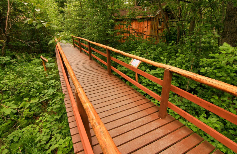 Bridge at Kenai Riverside Lodge.