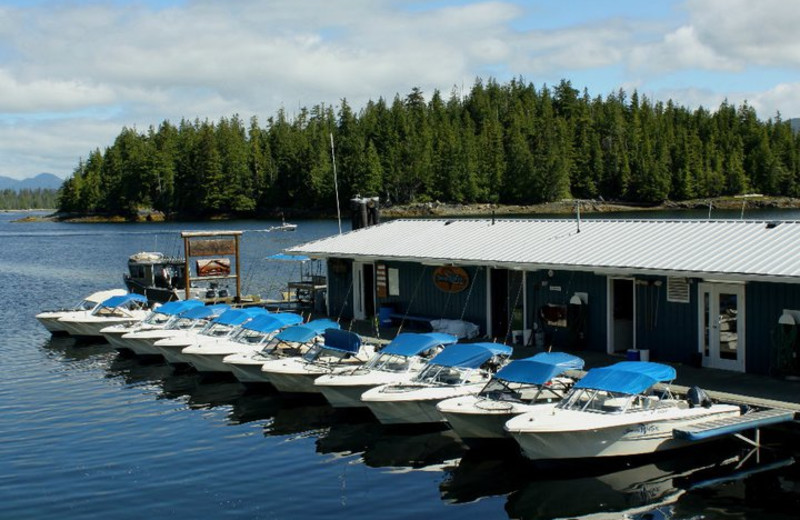 The marina at Shearwater Resort & Marina.