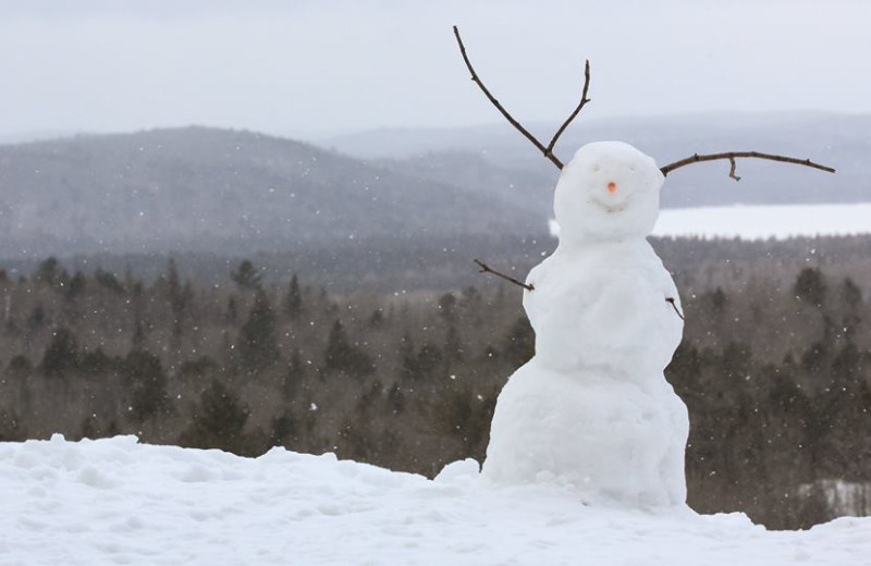 Snowman at Wolf Den Hostel and Nature Retreat.