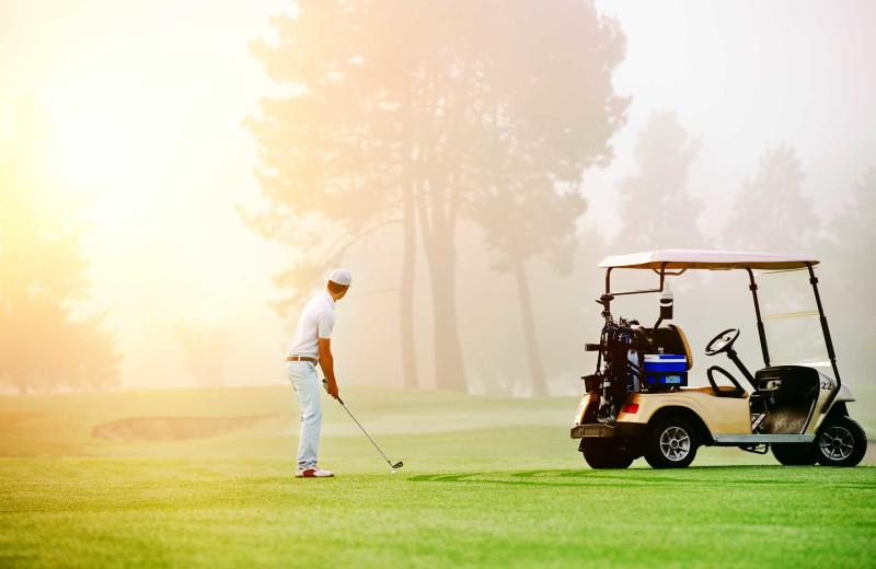 Golf at Apple Island Resort.