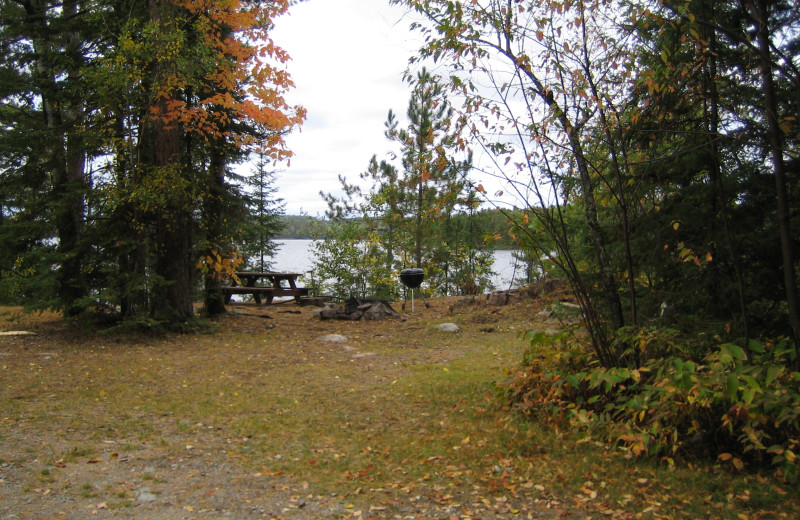 Campsite at Lodge of Whispering Pines.