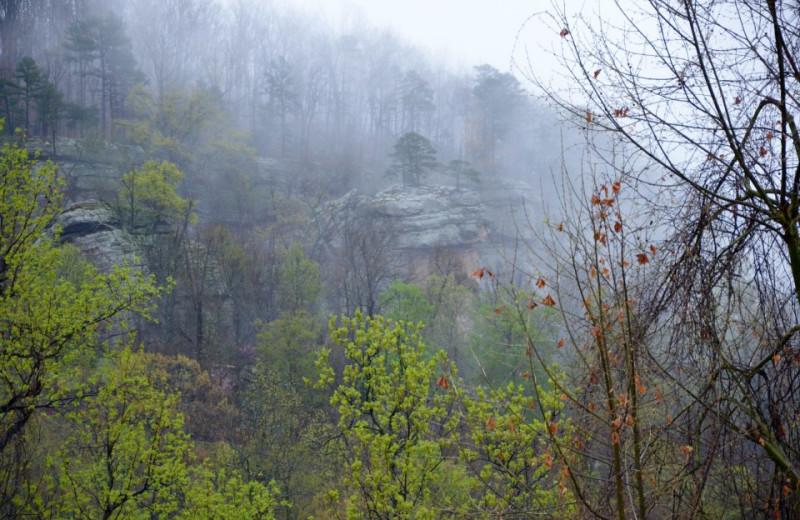 Cliffs at Horseshoe Canyon Ranch