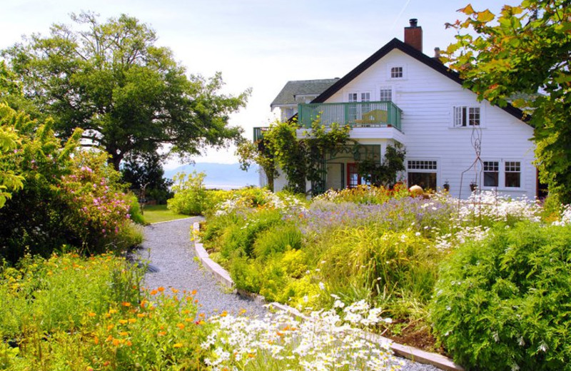 Garden view at Sooke Harbour House.