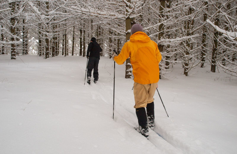 Skiing at Trout House Village Resort.