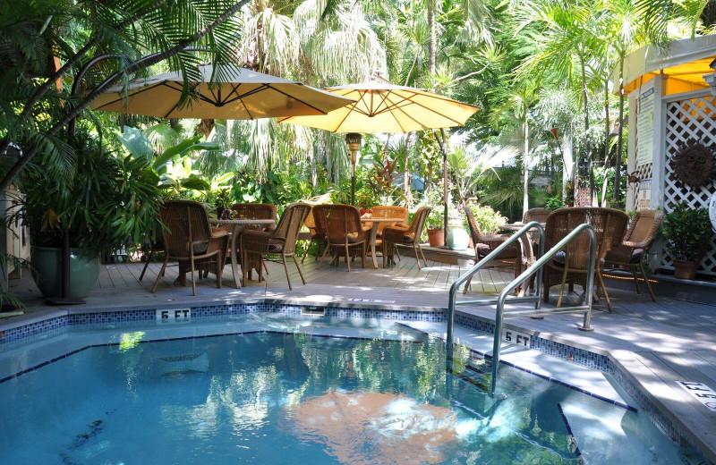 Outdoor pool at Mermaid & Alligator Key West.