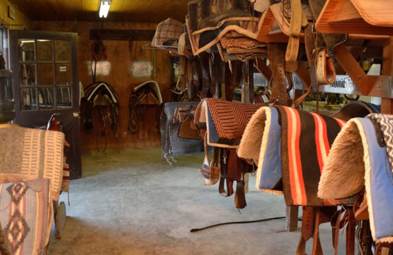 Saddles at Silver Spur Guest Ranch.