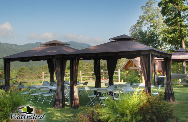 Wedding at Watershed Resort.