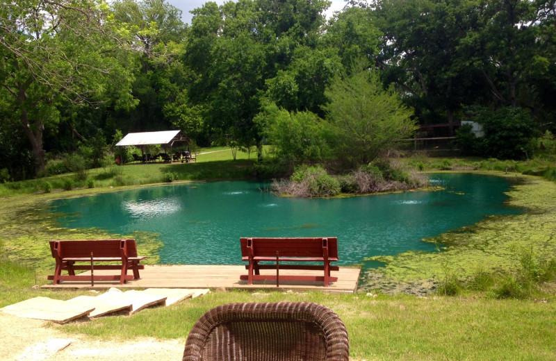 View at Geronimo Creek Retreat.