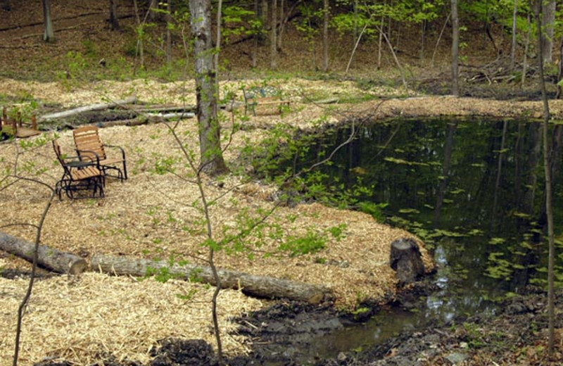 Pond view at Moondance Ridge Bed & Breakfast.