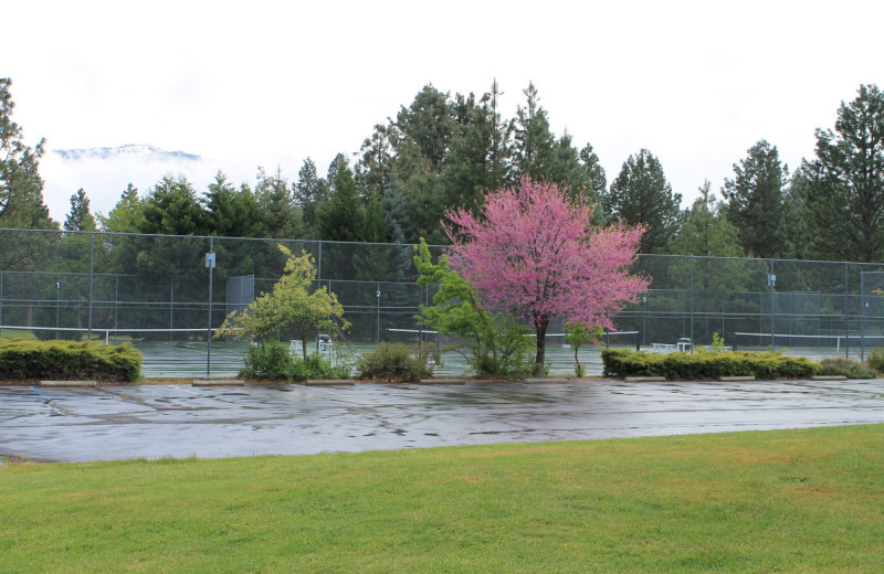 Tennis at Mount Shasta Resort.