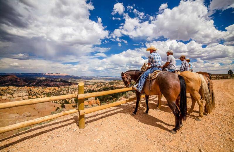 Horseback riding at Best Western Plus Ruby's Inn.