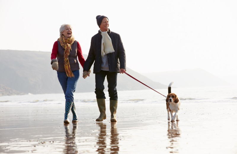 Couple on beach with dog at The Inn at English Meadows.