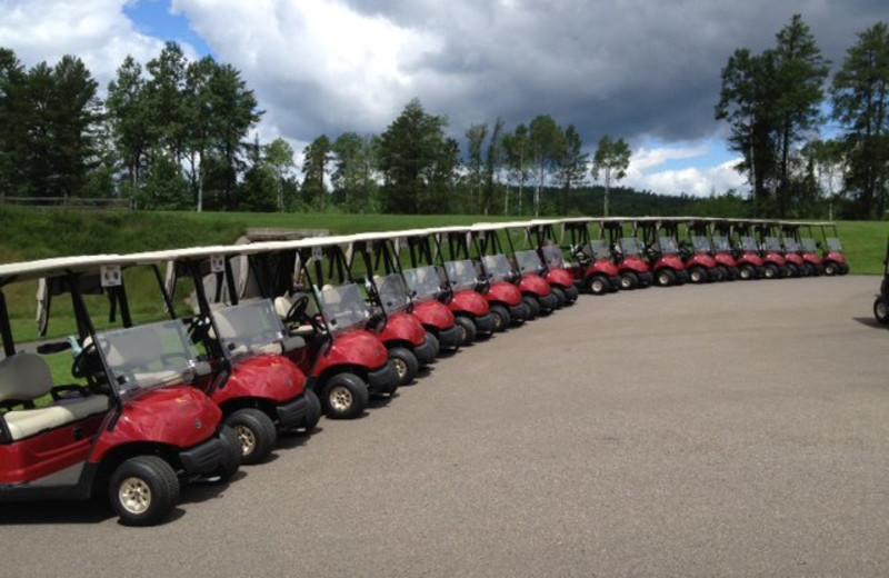 Golf carts at Giants Ridge Golf and Ski Resort.