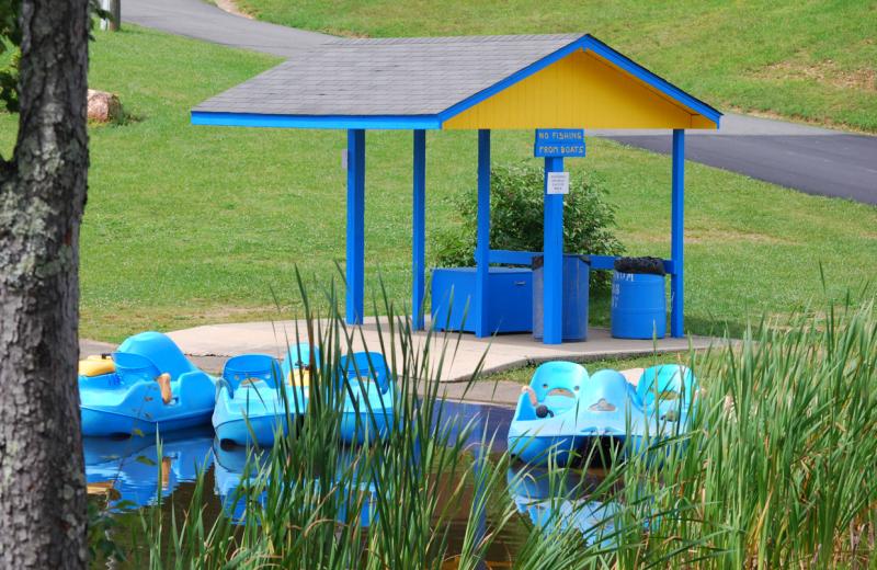Peddle boats at Lake Ridge Resort.