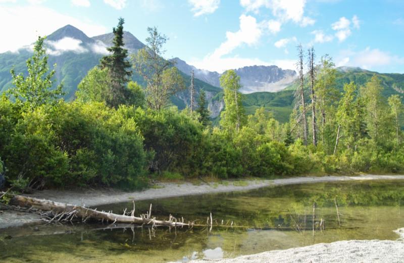 Scenic view at Salmon Catcher Lodge.