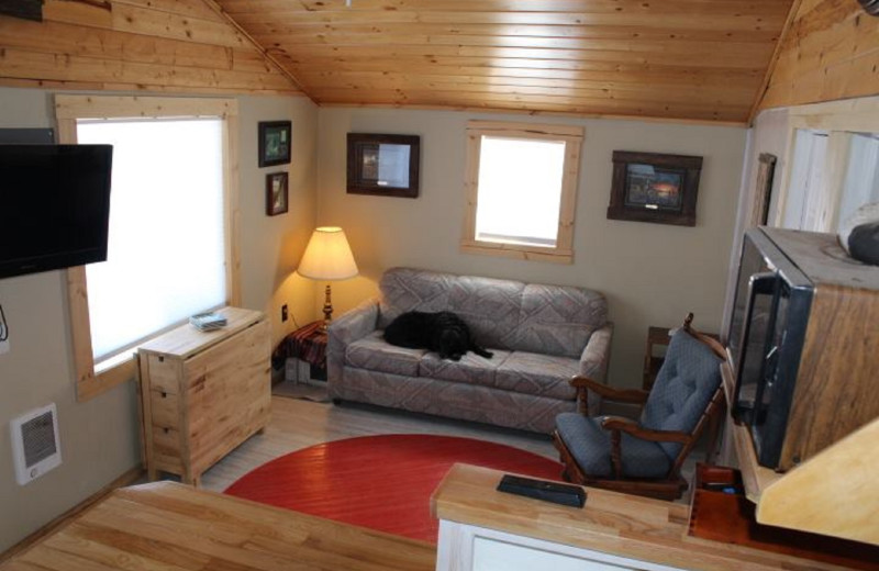 Cabin living room at The Lodge on Otter Tail Lake.