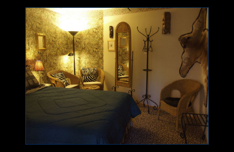 Africa bedroom at Coyote Blues Village B&B.