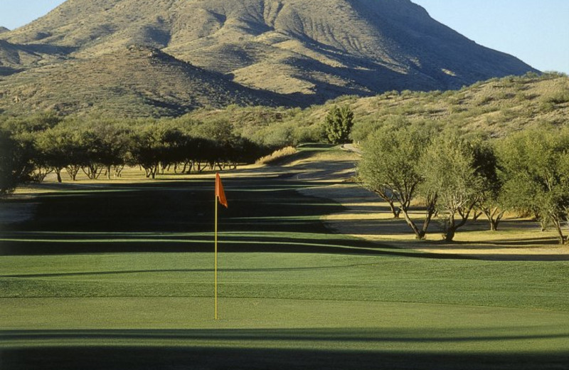 Golf Course at Esplendor Resort