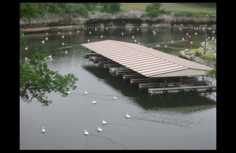 Covered dock at Cliffview Resort.