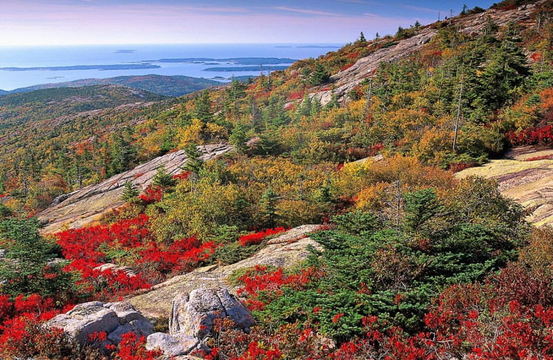 Scenic view at Acadia Cottage Rentals.