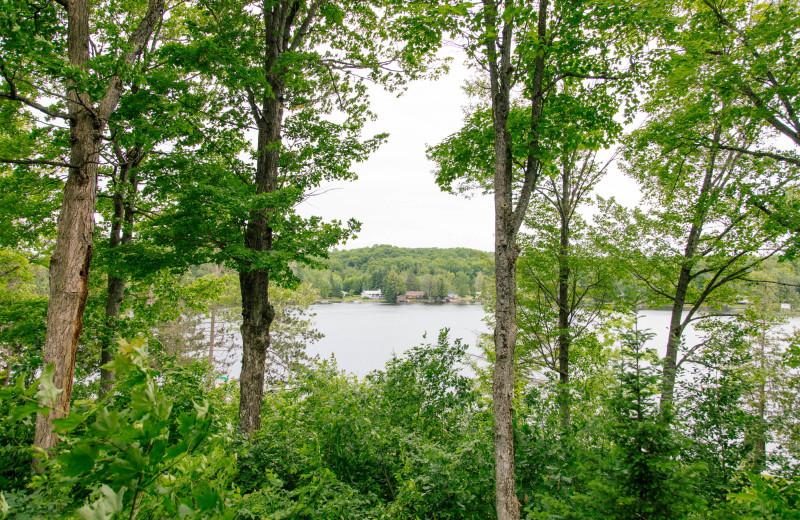 Lake view on Twelve Mile Lake at Heather Lodge.