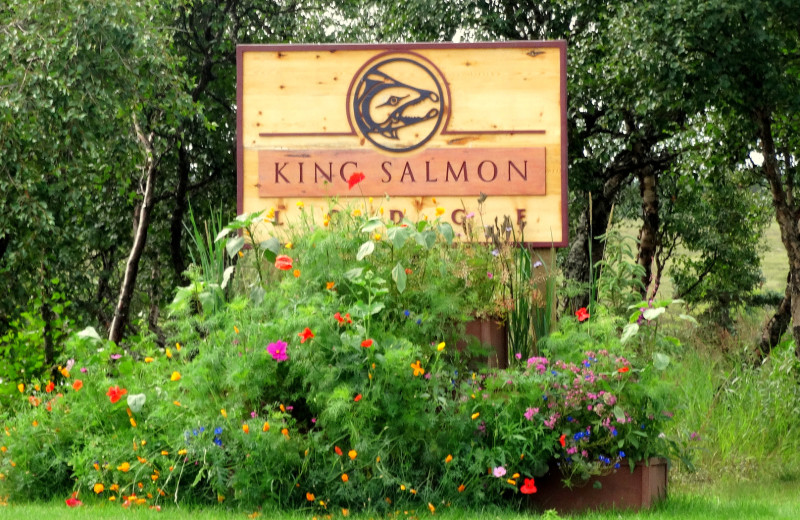 Welcome to King Salmon Lodge.