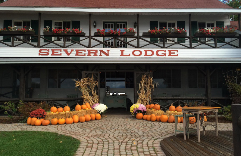 Holidays at Severn Lodge.