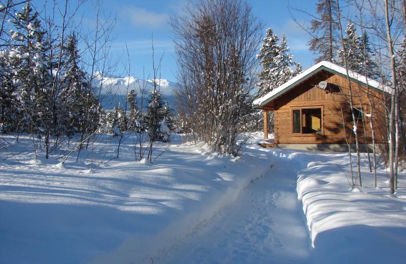 Mica cabin, Mica Mountain Lodge & log cabins