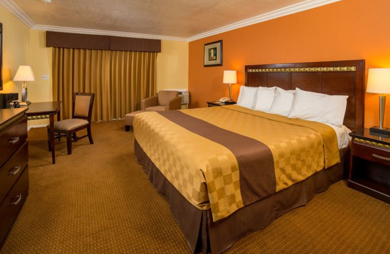 Guest Room at Days Inn Palm Springs