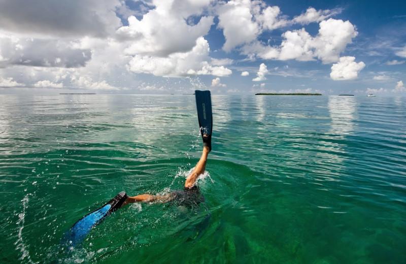 Swimming at The Inn at Key West.