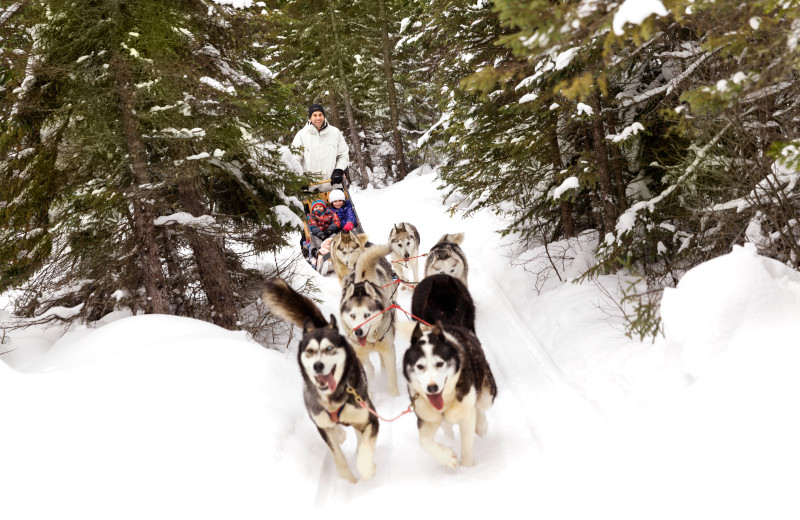 Dogsled at Fairmont Le Manoir Richelieu.